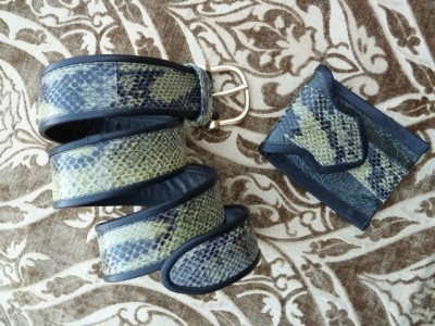Snakeskin Print Leather Belt and small Cell Phone Carrier